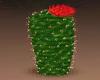 Cactus w/Flower