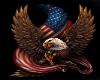 Eagle and America Art