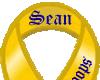 Sean - Troop Support