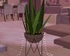 [kk] CityView  Plant