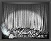 Grey Photo Room