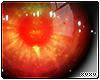 Unisex Eyes // Gaia C