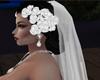 *D* Gown veil