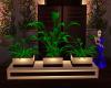 Trio Plant Boxes
