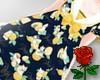 Lemon Cats Lolita Dress
