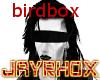 BIRDBOX BLINDFOLD