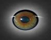 eye green brown VI