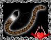 Bina Tail