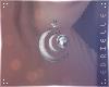 E~ Moon Earrings
