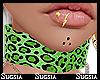 S|India|Choker Lime