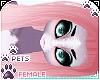 [Pets] Jura   Benicia