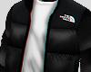 North Face Coat.