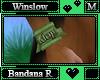 Winslow Bandana R M