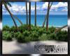 [BGD]White Sands Island