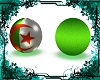 pose algerie