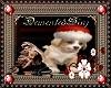 Christmas Puppy 1