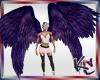 KC Purple Wings Double