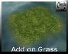 Add on Grass