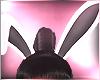 ~Gw~ Bunny Ears Animated