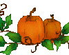 Harvest Pumpkin Sticker