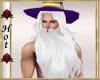 ~H~Merlins Wizard Beard
