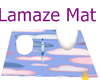 Lamaze Couple mat