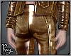 Metallic Bronze Pants