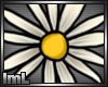 lmL Daisy 1