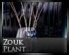 [Nic] Zouk Plant