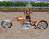Tiger Bike2