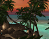 ♫ Palm Rocks