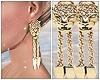 Earrings Tiger