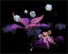 Anim.Magic Fairy Orchid