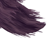 Purple Fox Tail
