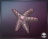 [T69Q] Ariel Starfish hp