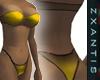CBF GOLD Bikini GA [z]