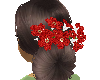 recogido flores
