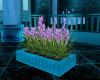 Flowering Planter