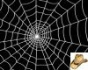 Full Spiderweb