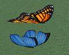 Papillon Animée