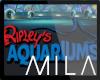 MB: RIPLEY'S AQUARIUM