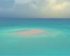 Island Cove Morning