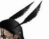 Crow Head Wings