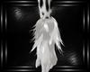 white felina arm fur