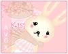 ☾ bunny doll plushie