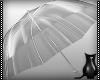 [CS] Plastic Umbrella