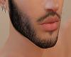 asteri beard