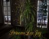 [PLJ] WINTER PLANT