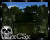 CS Day Forest