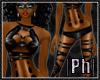 Ph|PB|SOLEIL|V1